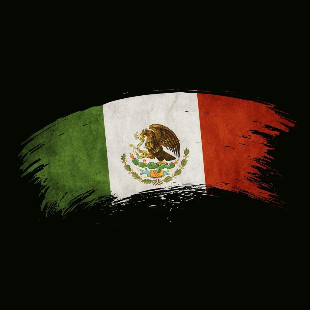 Cuál es el mejor hosting de México para alojar una página web