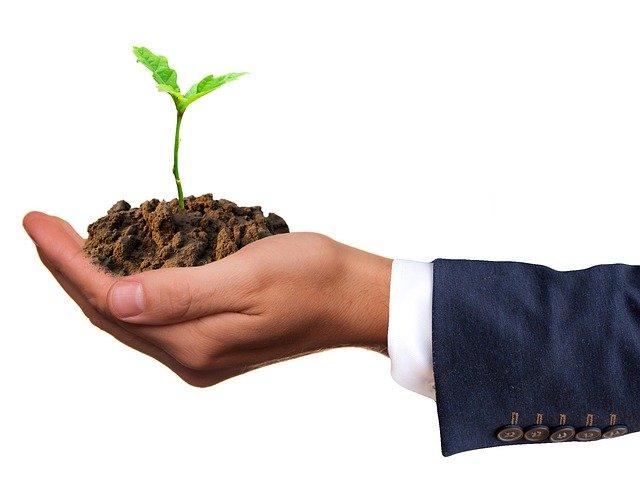 Green hosting caracteristicas