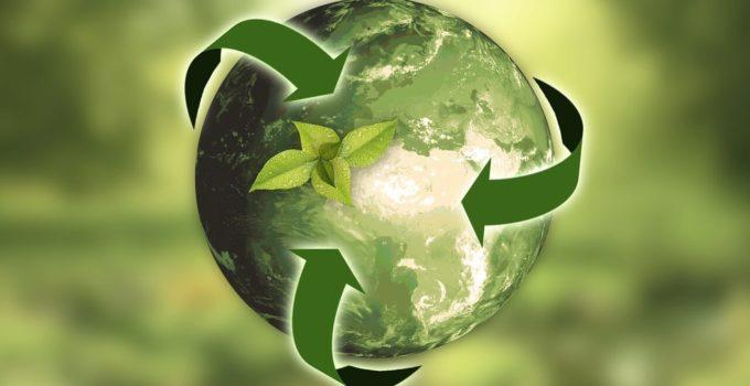 Hosting ecológico, ¿qué es y por qué usarlo?